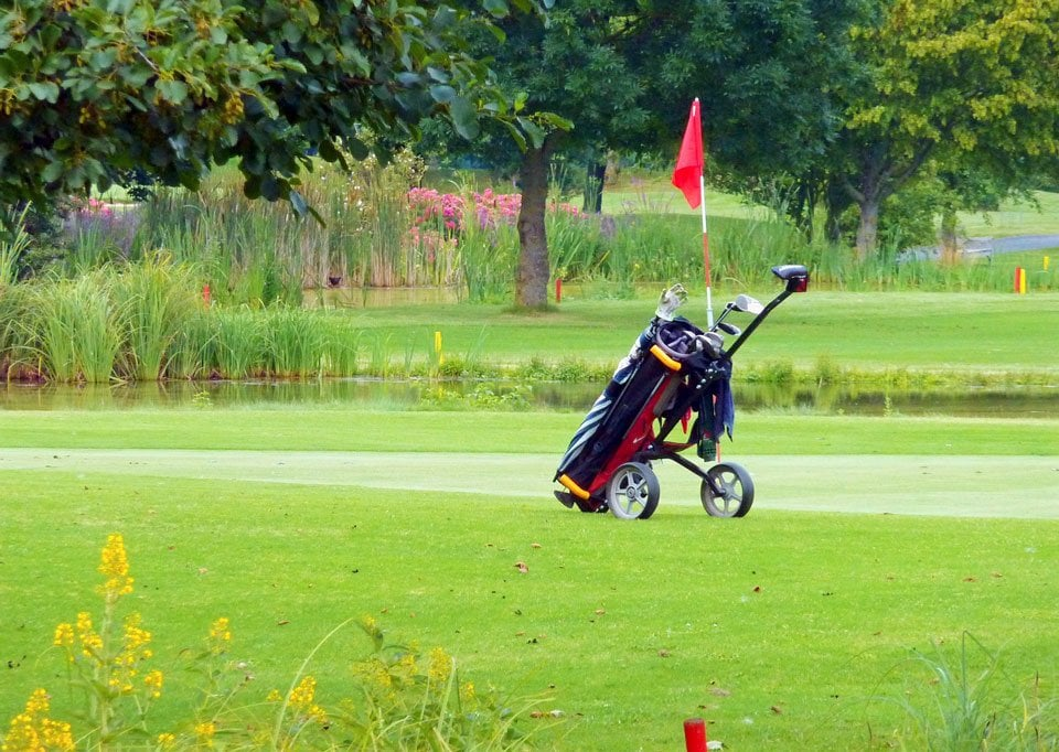 Best-golf-bags-for-push-cart