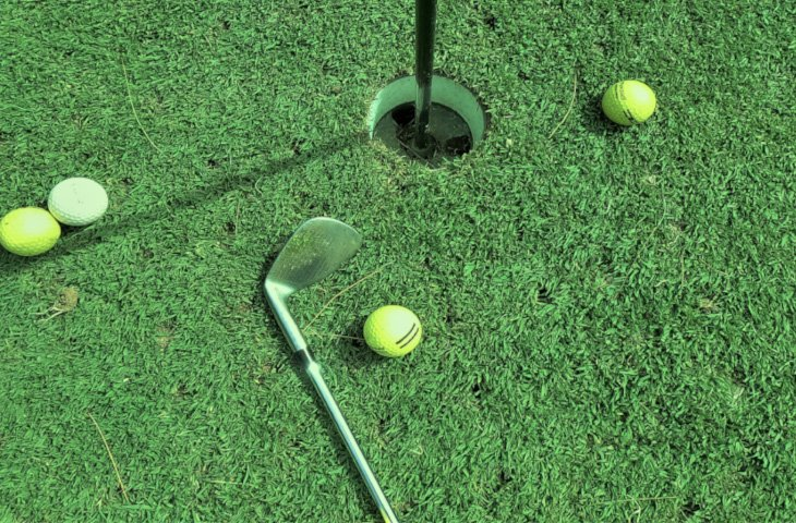 Best-home-putting-green